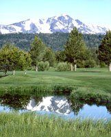 Lake Tahoe Golf Club - Green Fee - Tee Times