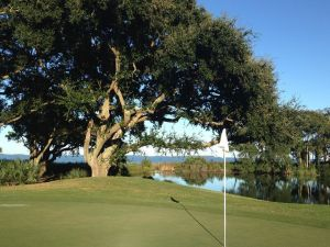 Oyster Reef Golf Club - Green Fee - Tee Times