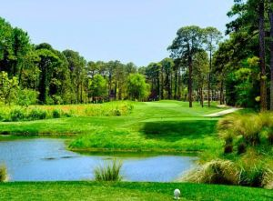 Palmetto Hall Plantation - Arthur Hills Course - Green Fee - Tee Times