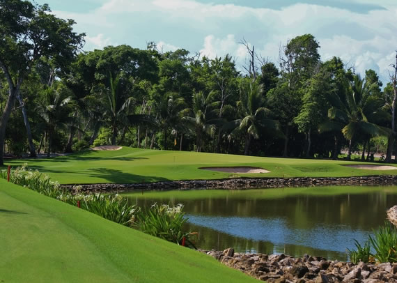 Iberostar Playa Paraiso - Green Fee - Tee Times