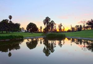 Royal Vista Golf Club - Green Fee - Tee Times