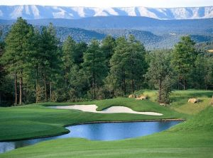 The Rim Golf Club - Green Fee - Tee Times