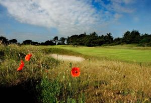 Seapoint Golf Links - Green Fee - Tee Times