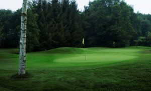 De Voortwisch 9 Hole - Green Fee - Tee Times