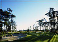 Dukes Golf Club - Green Fee - Tee Times