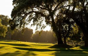 Country Club of Woodbridge - Green Fee - Tee Times