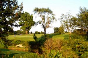 Wolves Crossing Golf Club - Green Fee - Tee Times