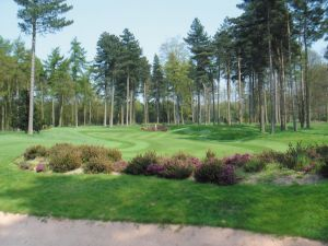 Forest Pines - Pines - Green Fee - Tee Times