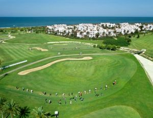 Costa Ballena Ocean Golf Club - Palmeras/Ficus - Green Fee - Tee Times