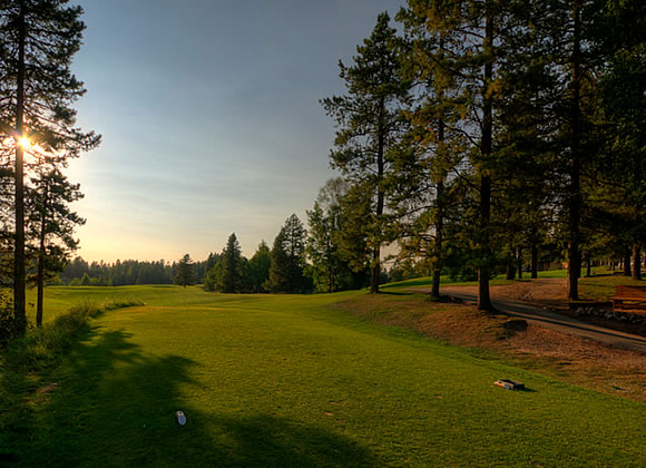 Pine Hills Golf Club - Green Fee - Tee Times
