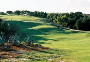 Golf Citrus - Forêt Course - Green Fee - Tee Times