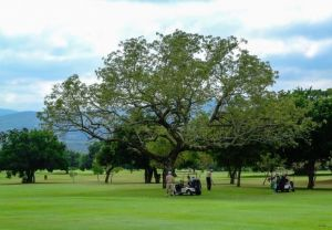 Nelspruit Golf Club - Green Fee - Tee Times
