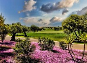 Son Gual Golf - Green Fee - Tee Times