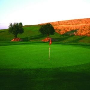 Golf de Saint-Quentin en Yvelines - Rouge - 18T - Green Fee - Tee Times