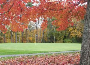 Martindale Country Club - Green Fee - Tee Times