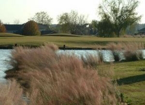 Elm Lake Golf Course - Green Fee - Tee Times