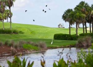 Heron Creek Golf - Marsh - Green Fee - Tee Times