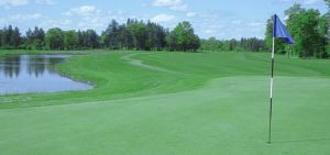 Black Bear Golf Club - Green Fee - Tee Times
