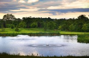Carden Park - Cheshire Golf Course - Green Fee - Tee Times