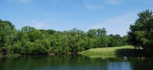 Fairfield Golf Club - Green Fee - Tee Times