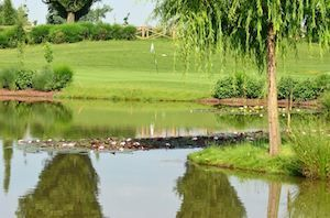 La Colombera Golf Club - Green Fee - Tee Times