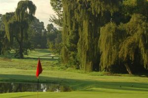 Rand Park Bushwillow Golf - Green Fee - Tee Times