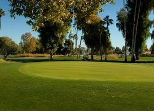Orange Tree Golf Club - Green Fee - Tee Times
