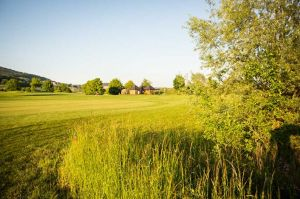 Golf Club Lägern - AA Birdie Cart 8 - Green Fee - Tee Times